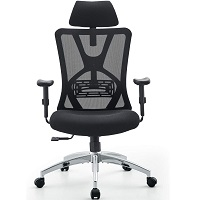 BEST WITH BACK SUPPORT ERGONOMIC CHAIR FOR LOWER BACK Summary