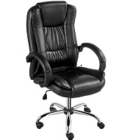 BEST WITH BACK SUPPORT ERGONOMIC CHAIR UNDER 100 Summary