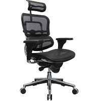 BEST WITH BACK SUPPORT MESH BACK AND SEAT OFFICE CHAIR Summary