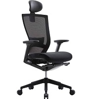 BEST WITH BACK SUPPORT OFFICE CHAIR STRAIGHT BACK Summary