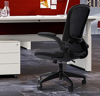 Devoko Ergonomic Office Chair