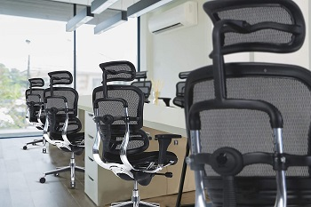 Eurotech Ergohuman Office Chair