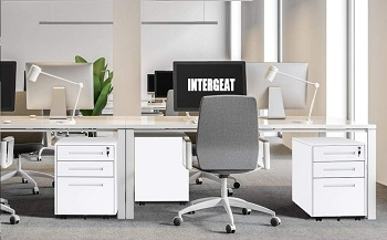 INTERGREAT Mobility Cabinet for ClosetOffice