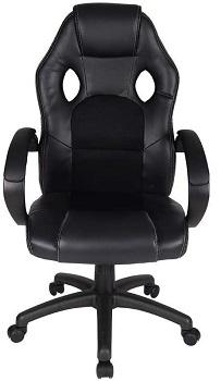 Polar Aurora Leather Chair