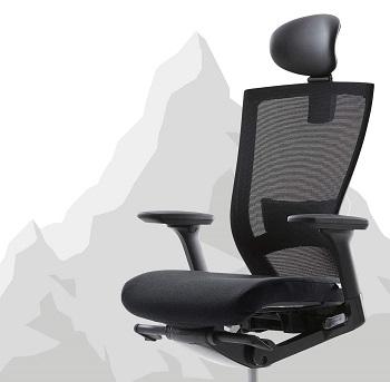Sidiz T50 Home Office Chair