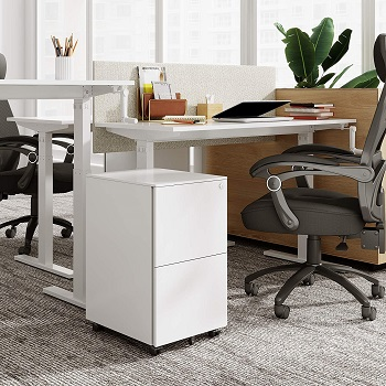 BEST LOCKED 2-DRAWER FILE CABINET WITH WHEELS