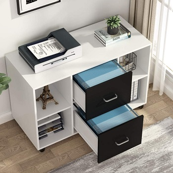 BEST OF BEST 2-DRAWER FILE CABINET ON ROLLERS