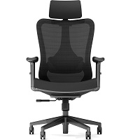 BEST WITH BACK SUPPORT COMFORTABLE WORK FROM HOME CHAIR Summary