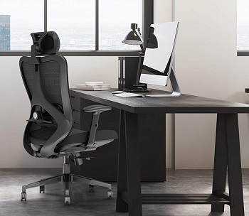 BEST WITH BACK SUPPORT COMFORTABLE WORK FROM HOME CHAIR
