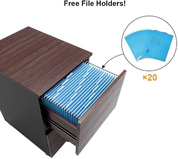 Bestier 2 Drawer File Cabinet with 20