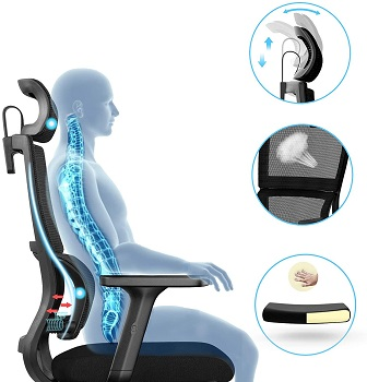 JOEAIS 001 Mesh Desk Chair