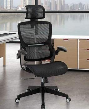 Samofu Ergonomic Adjustable Chair