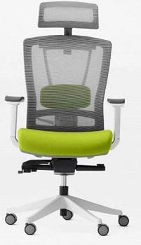 Autonomous Ergochair Chair