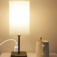 BEST LED NIGHT STAND LIGHT WITH USB PICKS