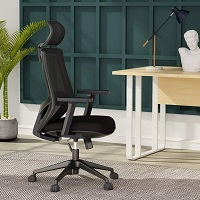 BEST MESH ERGONOMIC OFFICE CHAIR WITH ADJUSTABLE ARMS Summary