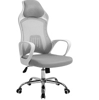 BEST ROLLING DESK CHAIR FOR CARPET Summary