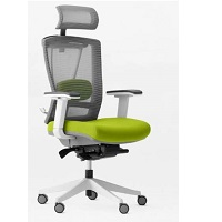 BEST WITH ARMRESTS ERGONOMIC CHAIR FOR TALL PERSON Summary