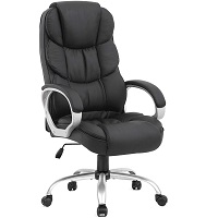 BEST WITH BACK SUPPORT BLACK ERGONOMIC OFFICE CHAIR Summary