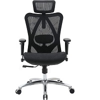 BEST WITH BACK SUPPORT ERGONOMIC CHAIR FOR TALL PERSON Summary
