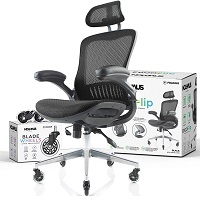 BEST WITH BACK SUPPORT ERGONOMIC CHAIR WITH ADJUSTABLE ARMS Summary
