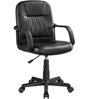 BEST WITH BACK SUPPORT OFFICE CHAIR FOR CARPET Summary
