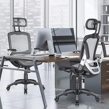 Gabrylly Ergonomic Mesh Chair