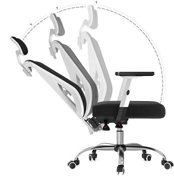 Hbada 100WM Desk Chair