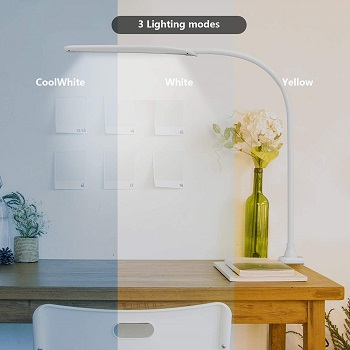 LED Desk Lamp with Clamp
