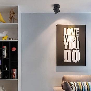 Aisilan Ceiling Spotlight LED