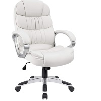 BEST CHEAP LEATHER OFFICE CHAIR WITH LUMBAR SUPPORTSummary