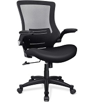 BEST ERGONOMIC MESH DESK CHAIR WITH ARMS Summary
