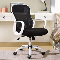 BEST FOR STUDY BLACK AND WHITE COMPUTER CHAIR Summary