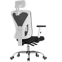 BEST OF BEST MESH DESK CHAIR WITH ARMS Summary
