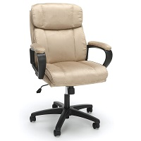 BEST OF BEST TAN LEATHER DESK CHAIR Summary