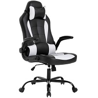 BEST STRIPED BLACK AND WHITE DESK CHAIR Summary