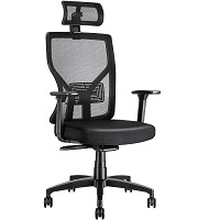 BEST TALL HOME OFFICE CHAIR WITH LUMBAR SUPPORT Summary
