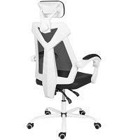 BEST WITH ARMRESTS LUMBAR SUPPORT CHAIR FOR HOME Summary