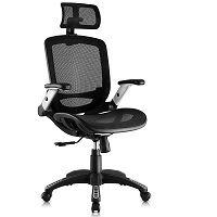 BEST WITH ARMRESTS MESH DESK CHAIR WITH ARMS Summary