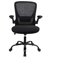 BEST WITH ARMRESTS TASK CHAIR FOR HOME OFFICE Summary