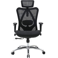 BEST WITH BACK SUPPORT BLACK MESH CHAIR Summary