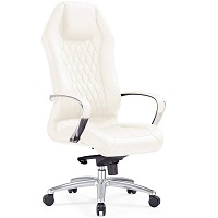 BEST WITH BACK SUPPORT CREAM LEATHER OFFICE CHAIR Summary