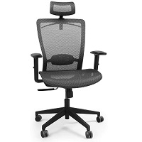 BEST WITH BACK SUPPORT MESH BOTTOM OFFICE CHAIR Summary