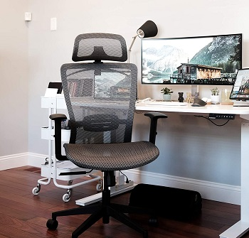 BEST WITH BACK SUPPORT MESH BOTTOM OFFICE CHAIR