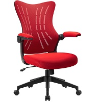 BEST WITH BACK SUPPORT MESH DESK CHAIR WITH ARMS Summary