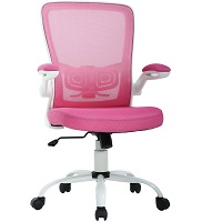 BEST WITH BACK SUPPORT PINK EXECUTIVE CHAIR Summary