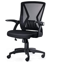 BEST WITH BACK SUPPORT TASK CHAIR FOR HOME OFFICE Summary