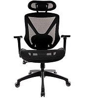 BEST WITH LUMBAR SUPPORT MESH CHAIR WITH HEADREST Summary