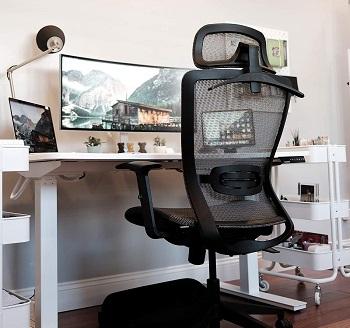 FlexiSpot OC3B Task Chair