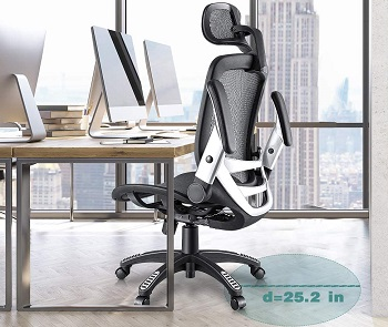 Gabrylly Ergonomic Computer Chair