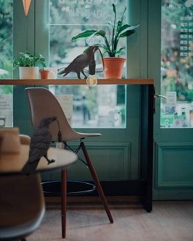 Raven Table Lamp - Crow Desk Lamp